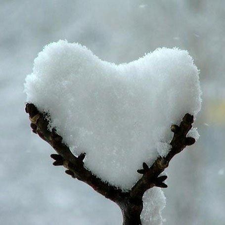 Speak Love en