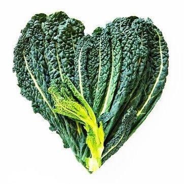 Top Reasons for Eating Kale en